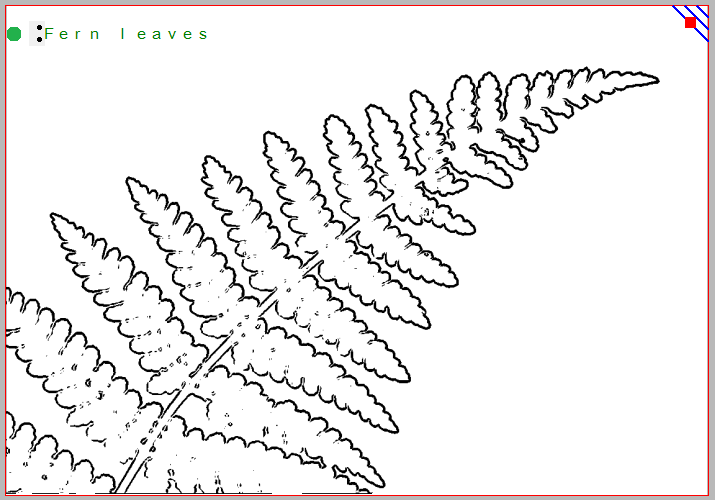 Tactile image of a fern